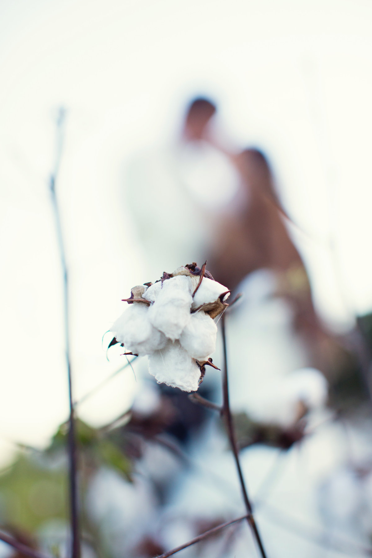 cotton_field_wedding_photography_alabama_birmingham_wedding_photographer_jadore_photographie-6