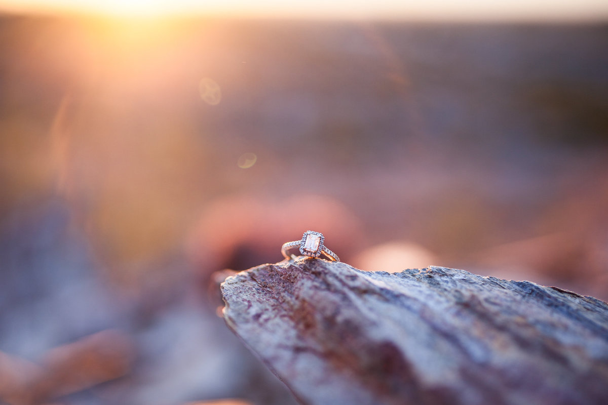dreamy-draw-engagement-photos_brooke-and-doug-photography_25
