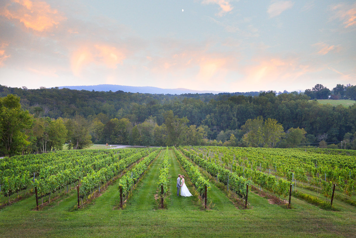 vineyard, nyc wedding photography, artistic, unique, beautiful
