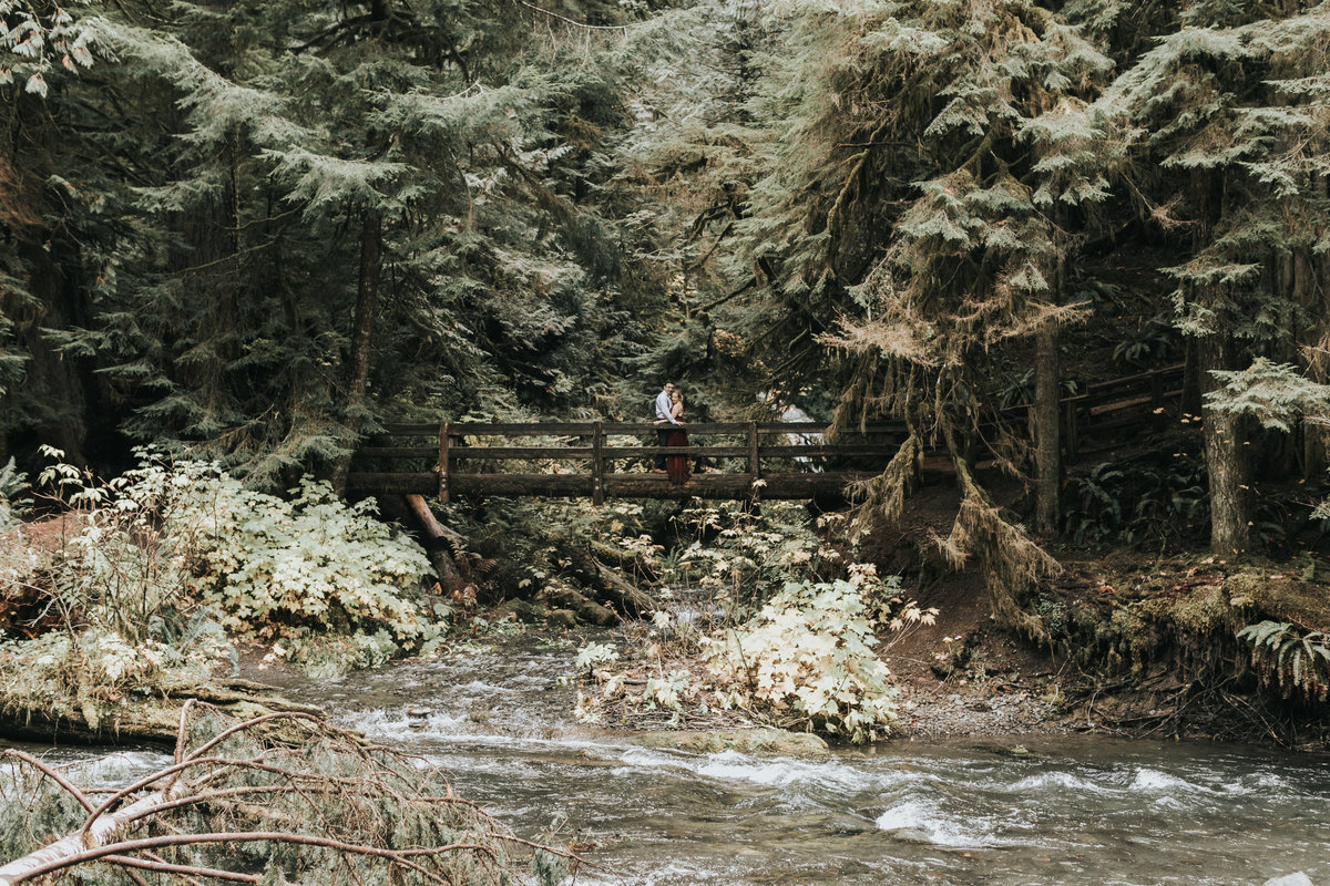 lakecrescent - olympic national park - marymere falls - elopement - engagement session-37