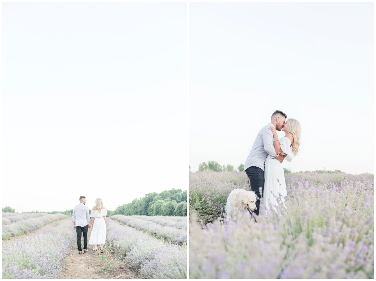 Light-and-Airy-Ottawa-Wedding-Photographer-La-Maison-Lavende-St-Eustache-Romantic-Lavender-Field-Engagement