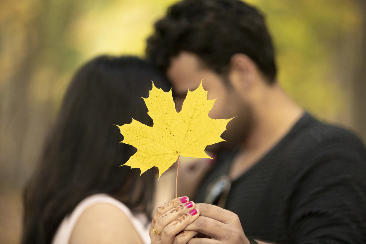 Couple with foreheads touching while they hold a leaf out blocking their faces from view for their pre-wedding photos in the Forks of the Credit River