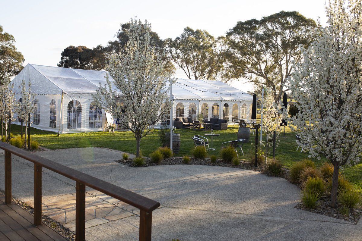 Mawarra-Functions-Small-Wedding-Venue-Melbourne (122)