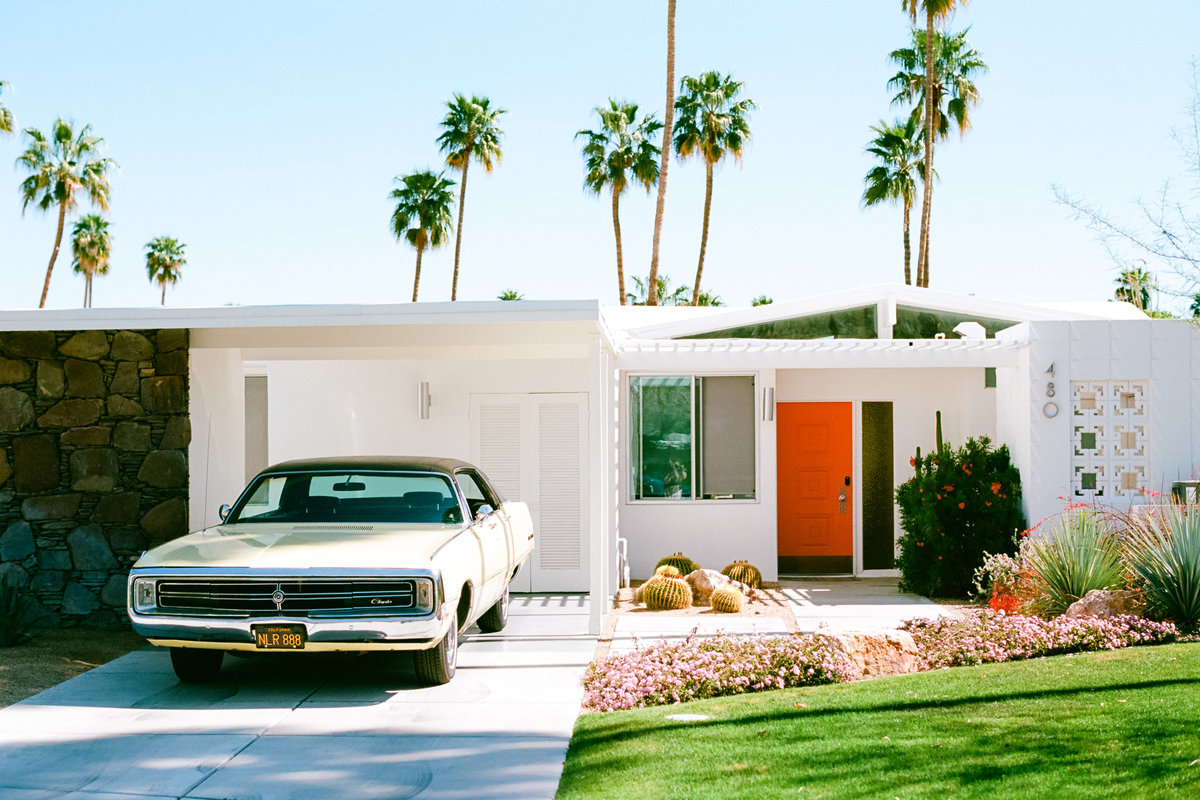 palm-springs-film-ektar100-221