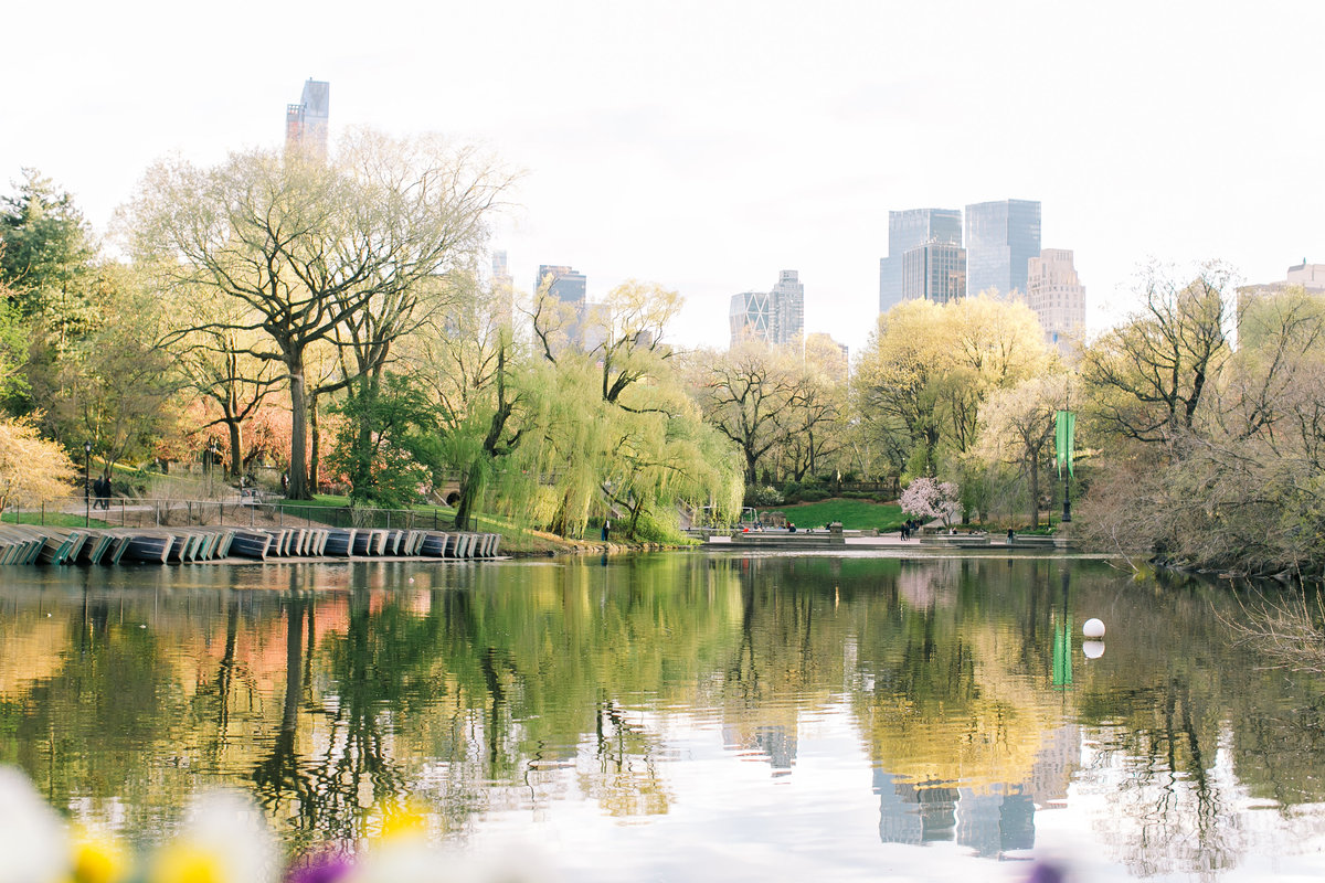 landscape image of Central Park overlooking the lake