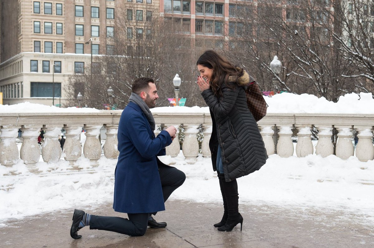 Chicago Proposal Millennium Park 2
