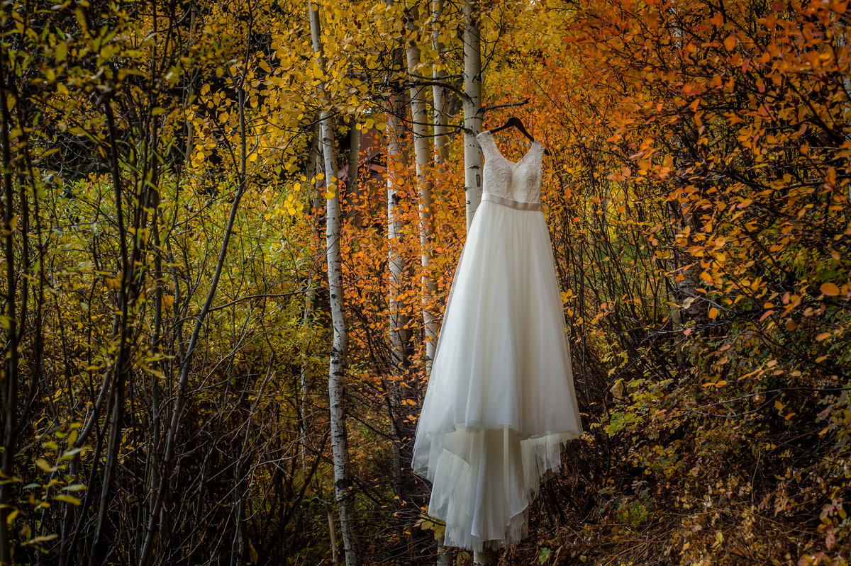 Telluride, co Wedding Dress Fall trees