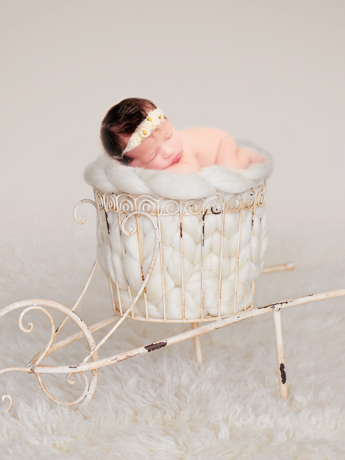 newborn portrait photography in traverse city michigan