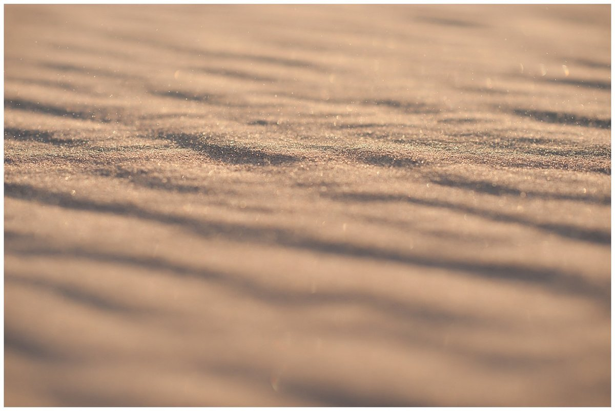 Glamis Desert Bohemian Wedding Styled elopement southern california sand dunes photo029
