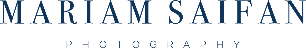 MS_logo_navy