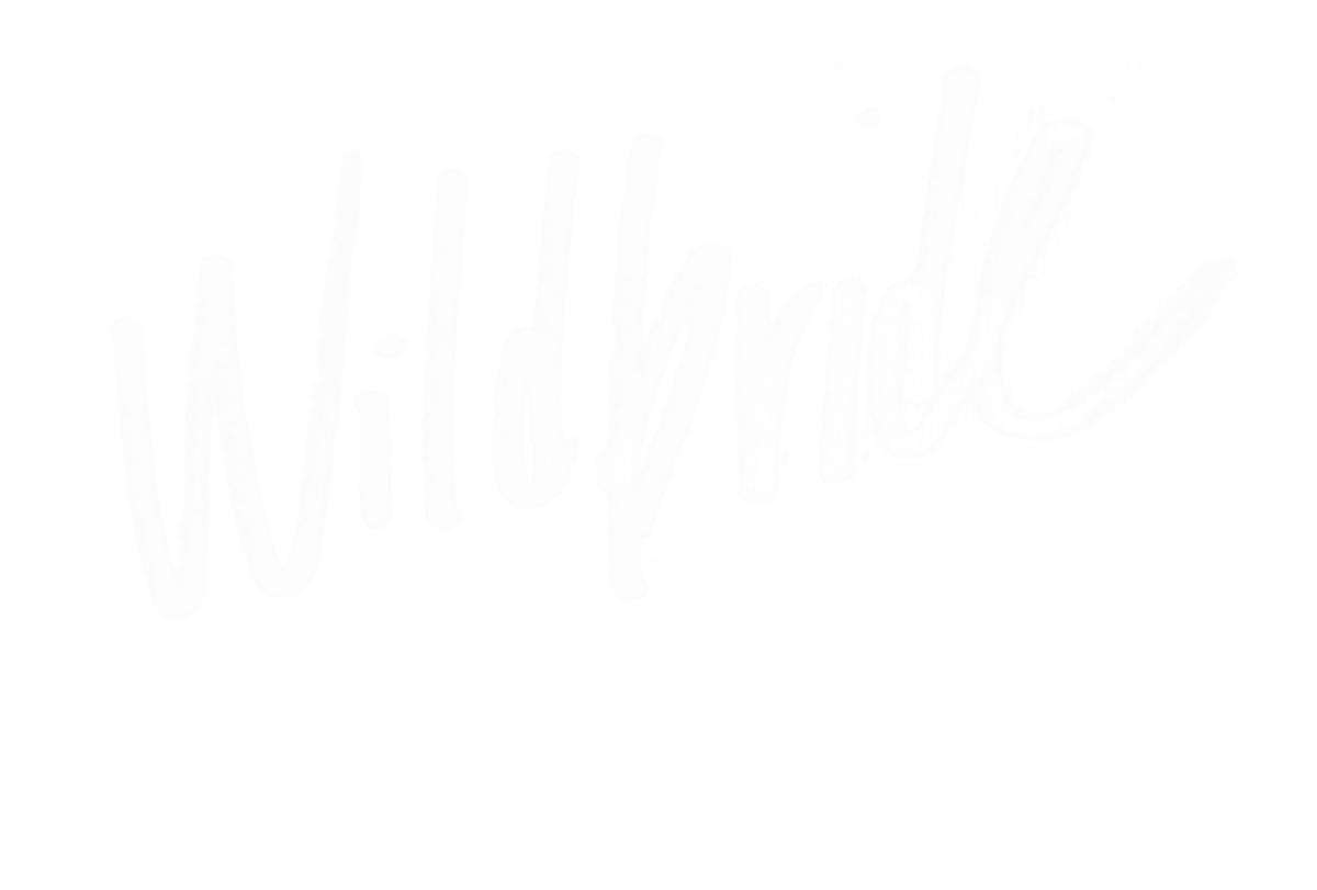 wildbride-seattle-boudoir-photography_layer_1