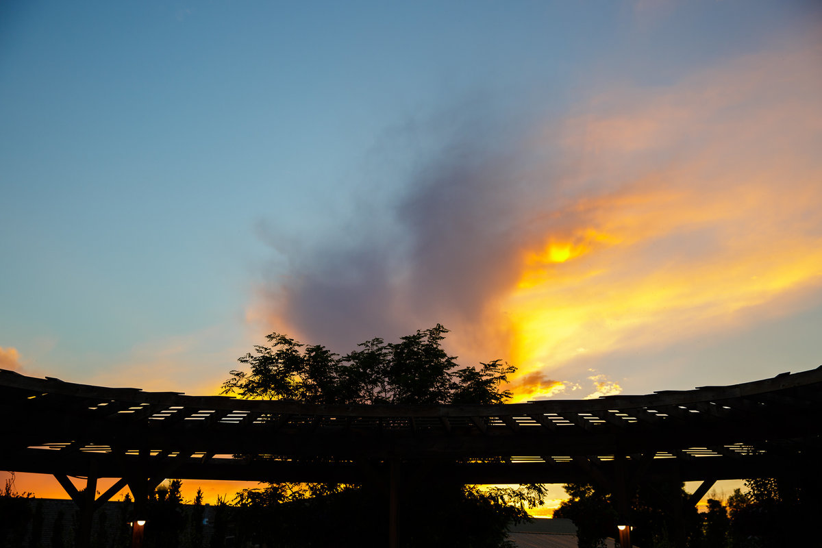 sunset-Colorado-garden-wedding-denver