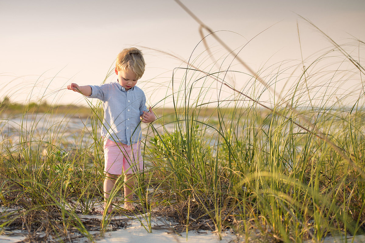a toddler boy searches in the dunes