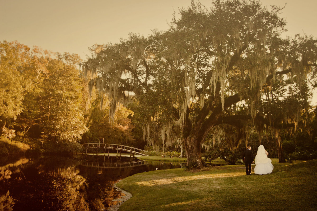 wedding photographers in charleston sc 1