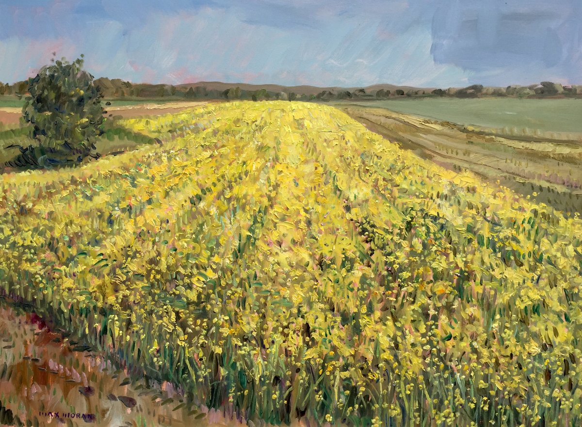 Mustard Field on Sound Avenue ooc 30X40 5,500