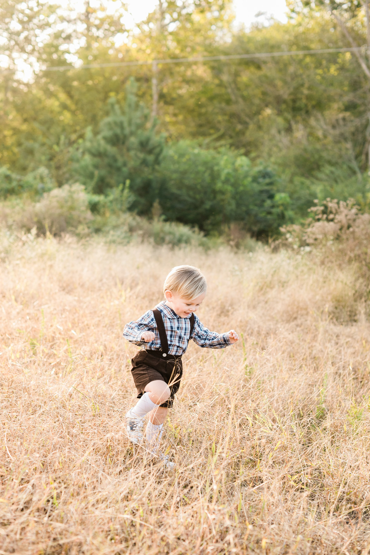 wake forest, nc kids photographer photo