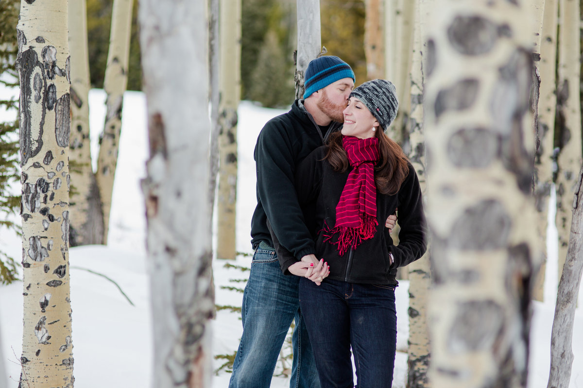 Aspens and birches with winter engagement photos