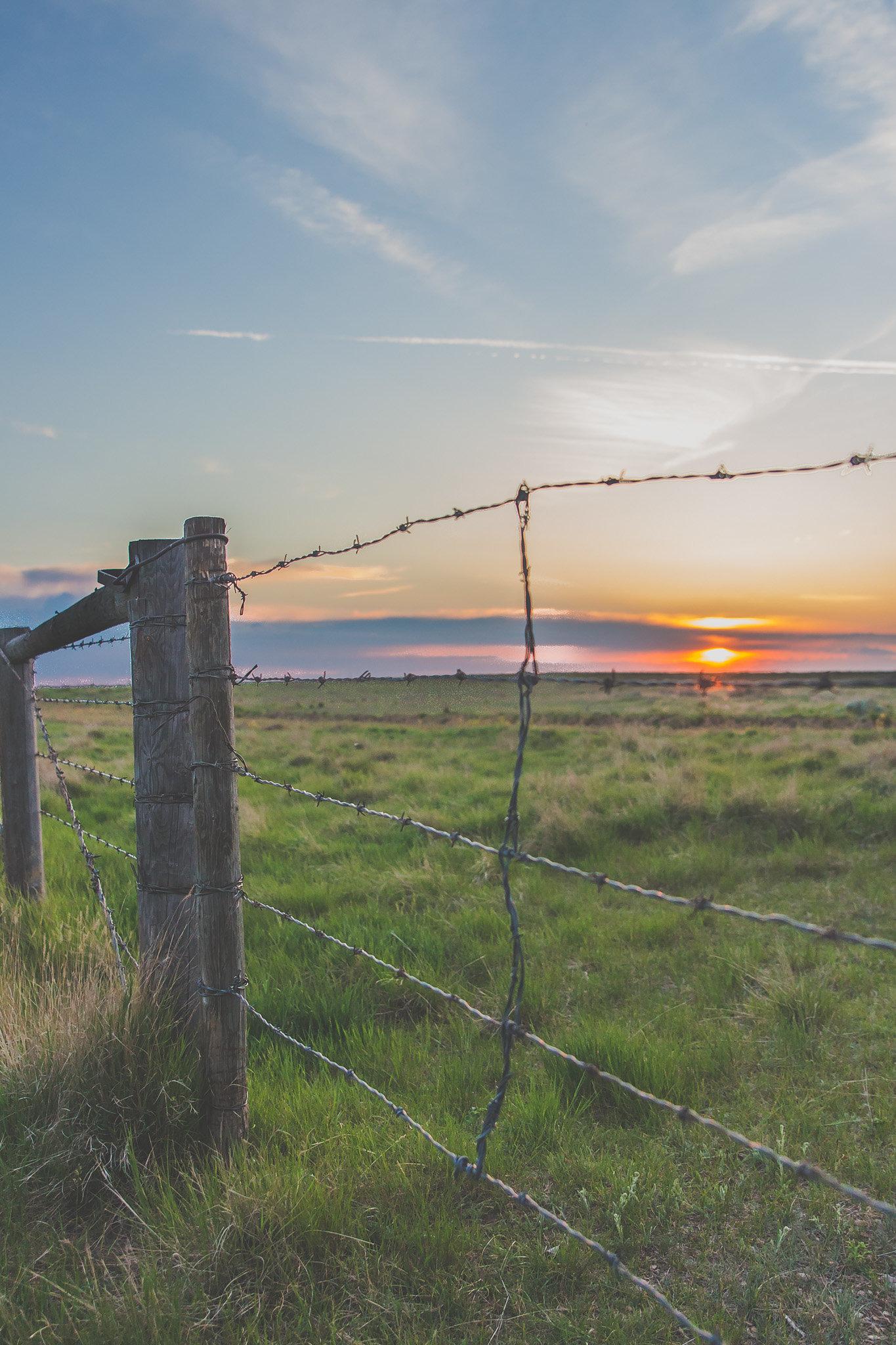emrosephotography-Alberta (002)