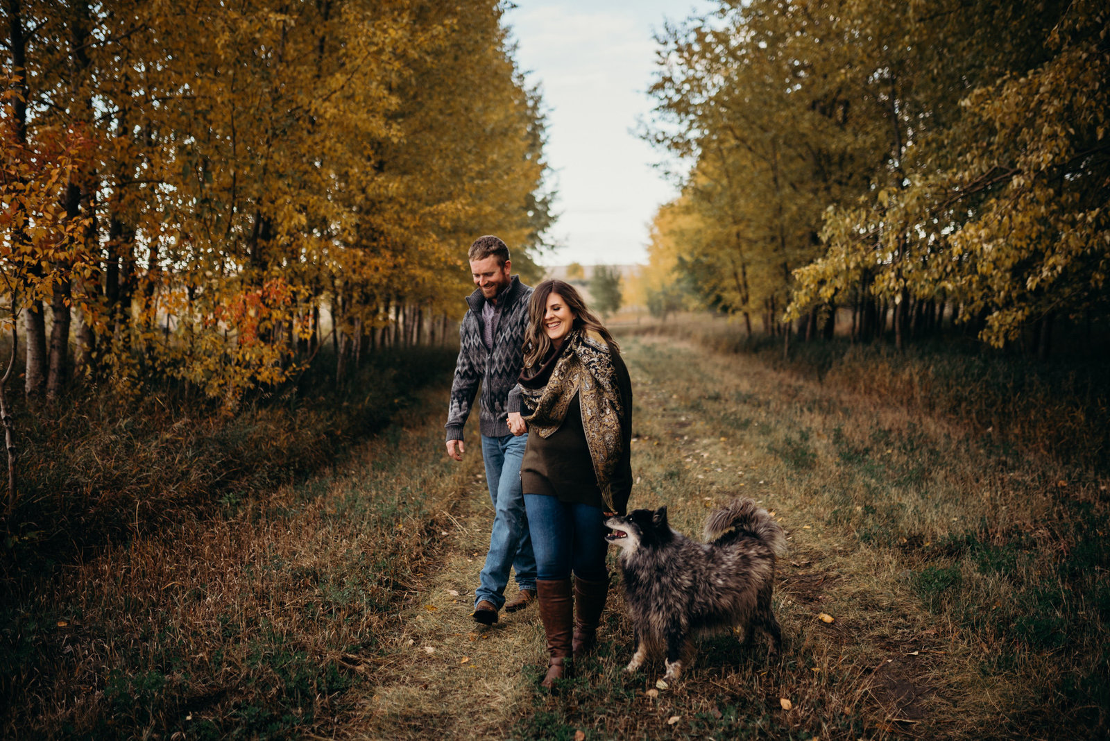 LETHBRIDGE|CANMORE |CALGARY|SOUTHERN ALBERTA PHOTOGRAPHER laura manson photography