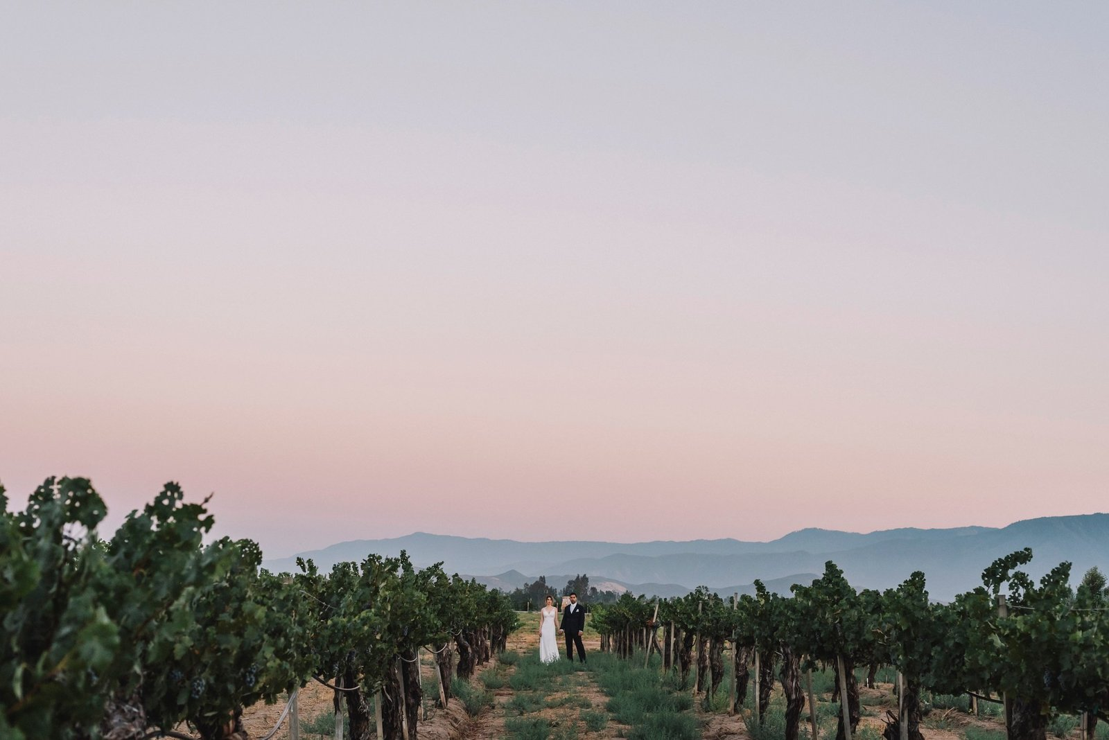 Ponte Winery Wedding (1)