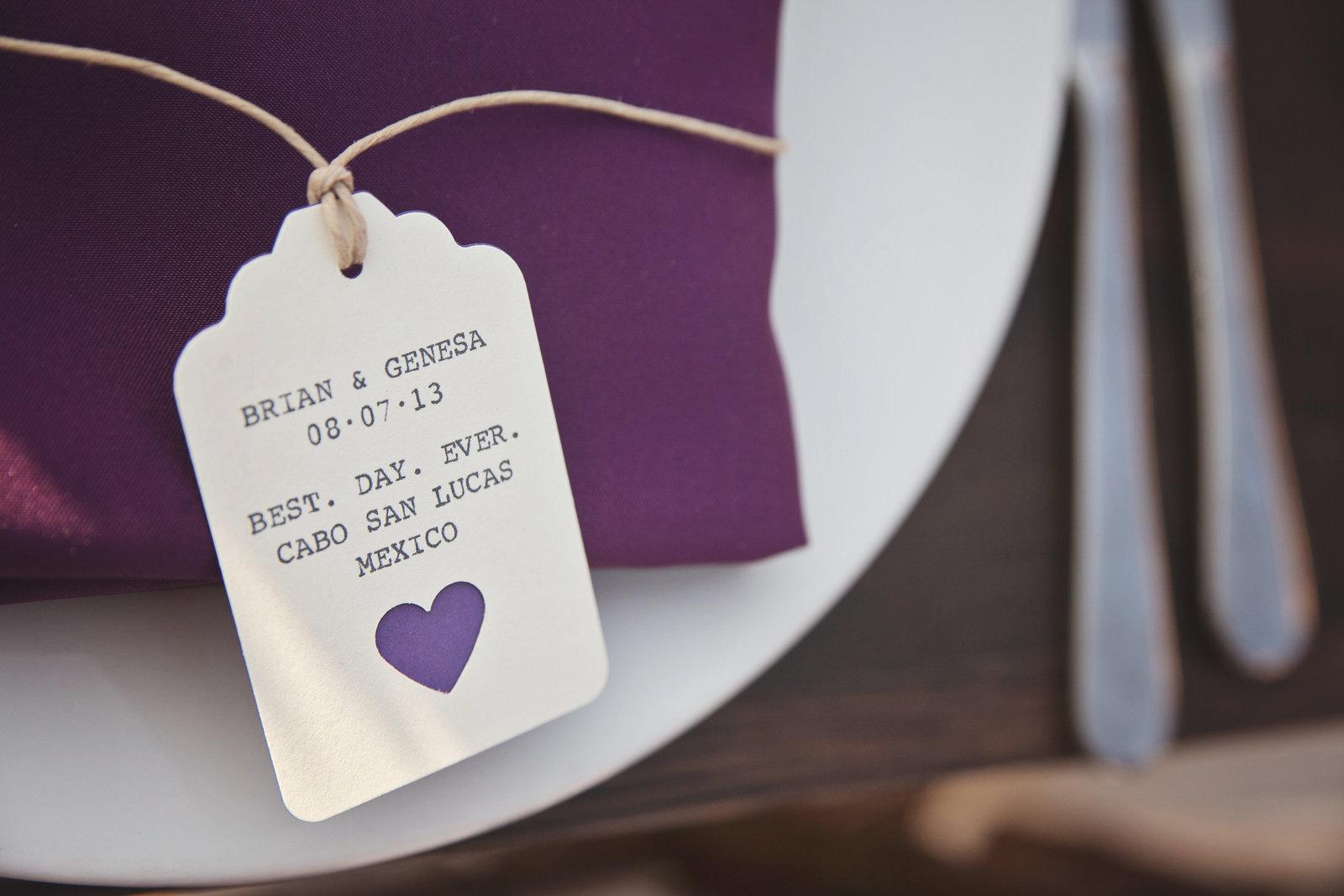 genesa-brian-cabo-destination-wedding500