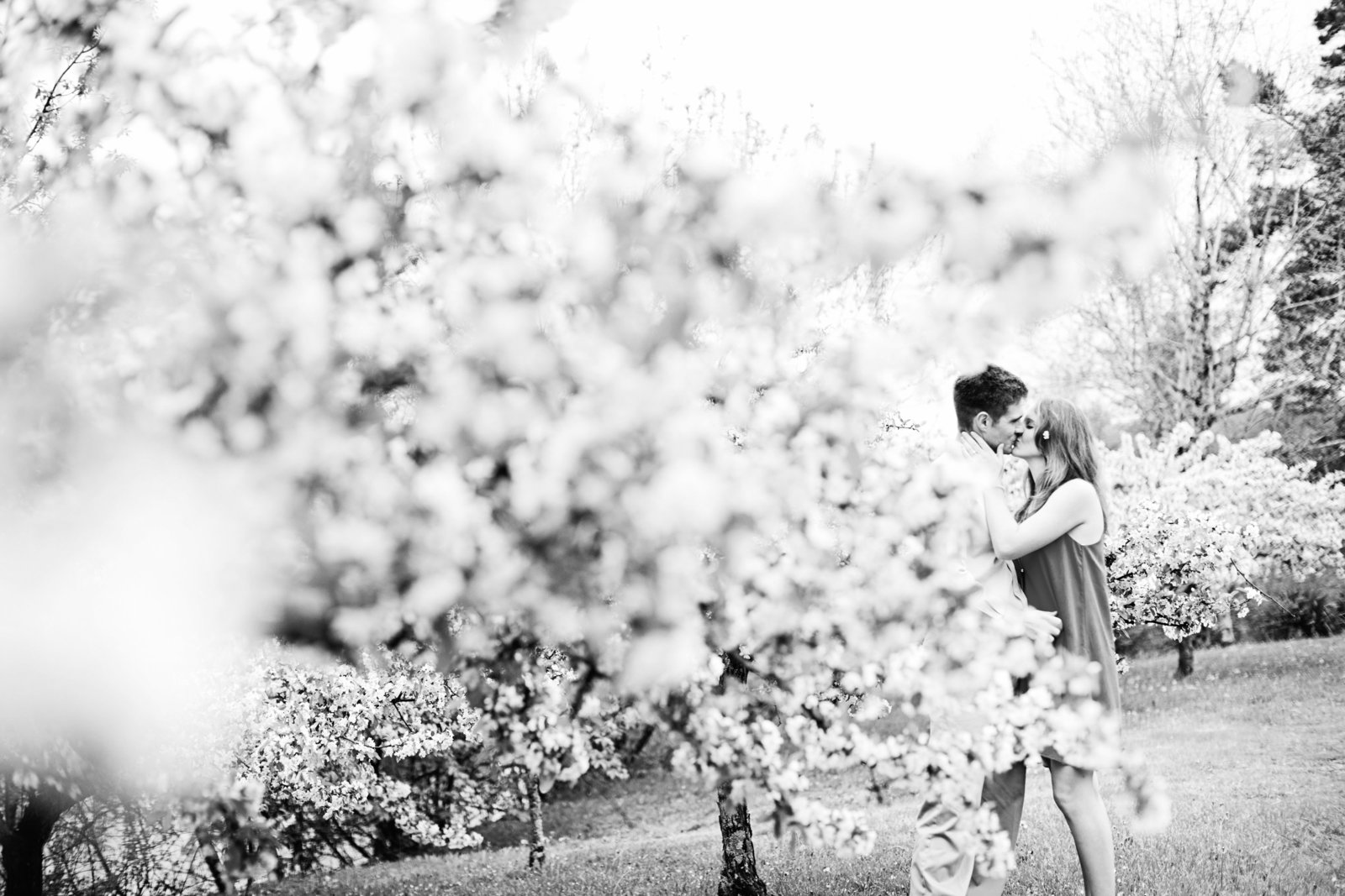 bridal portrait skyryder engagement wedding photography blacksburg roanoke charlottesville lexington radford-020
