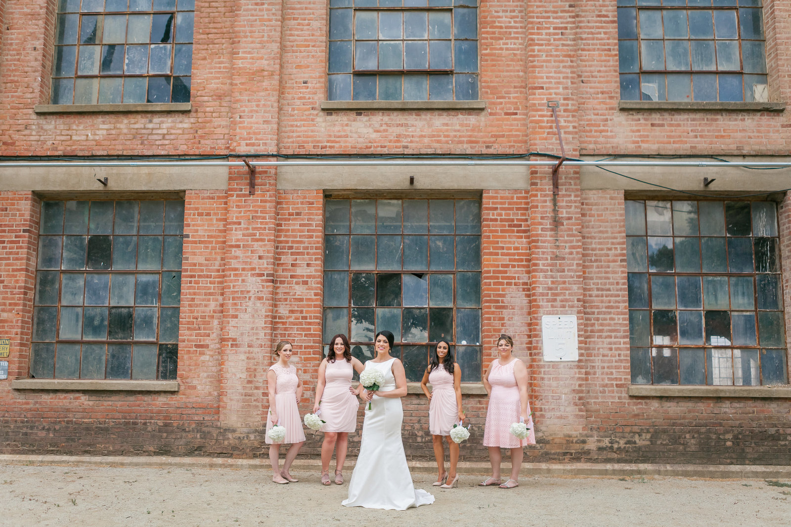 Sacramento Old Sugar Mill Bride with Bridal Party