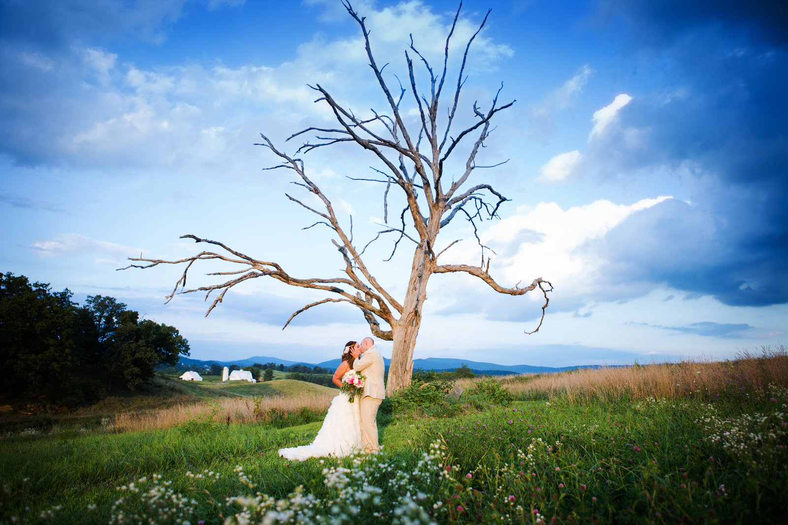 wedding portrait skyryder engagement wedding photography blacksburg roanoke charlottesville lexington radford-304
