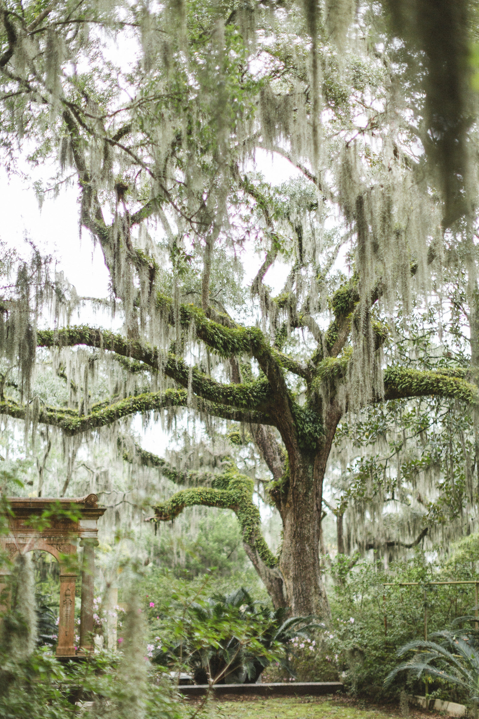 Savannah Georgia - DiBlasio Photo-2240