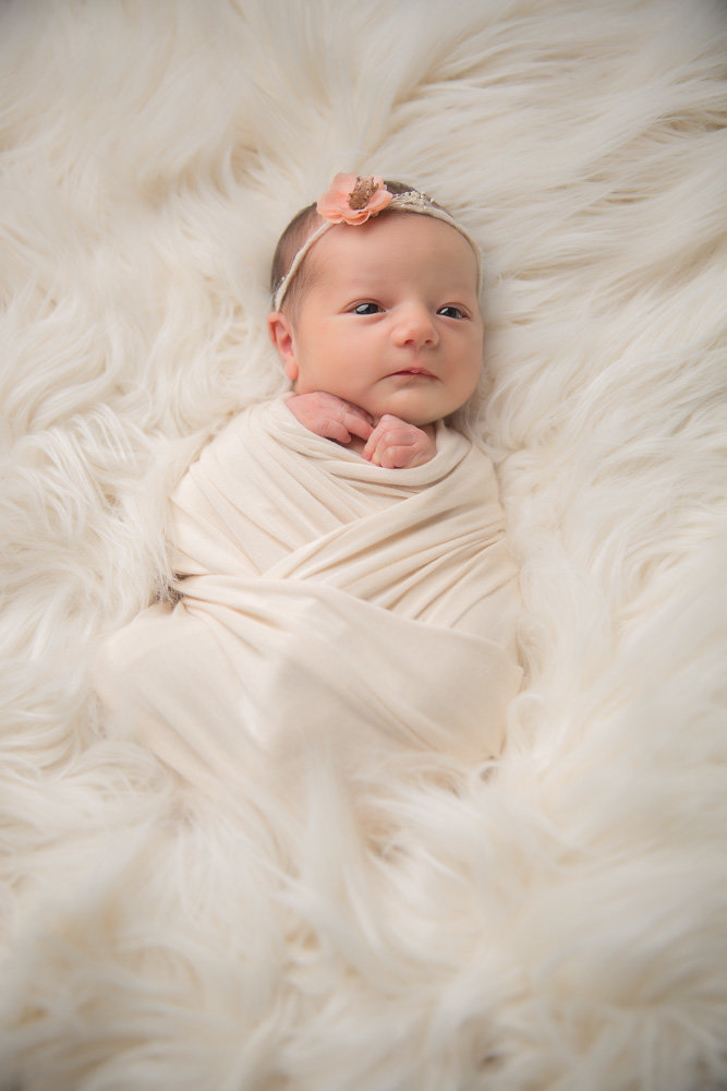 Newborn Photographer Clarksville --8