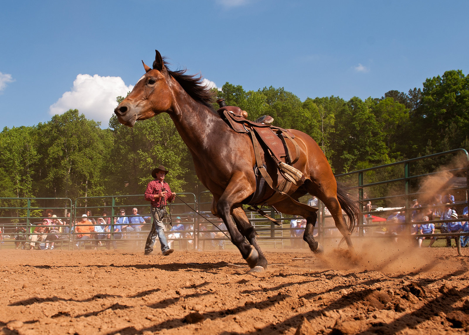 RidingHighMinistries_046