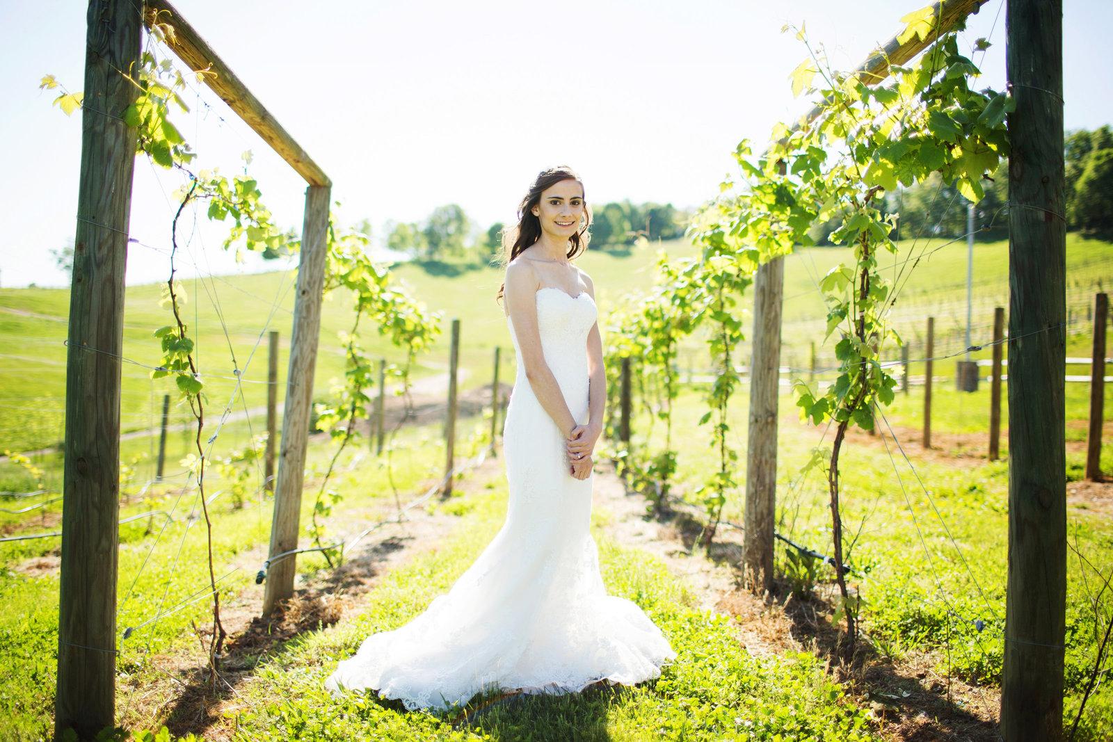 bridal portrait skyryder engagement wedding photography blacksburg roanoke charlottesville lexington radford-009