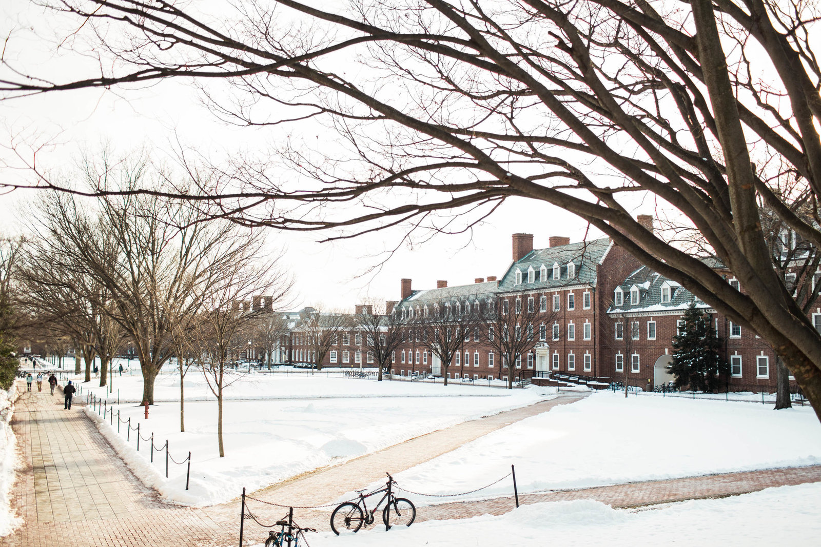 college-campus-winter-newark-de-kate-timbers-photography-1519