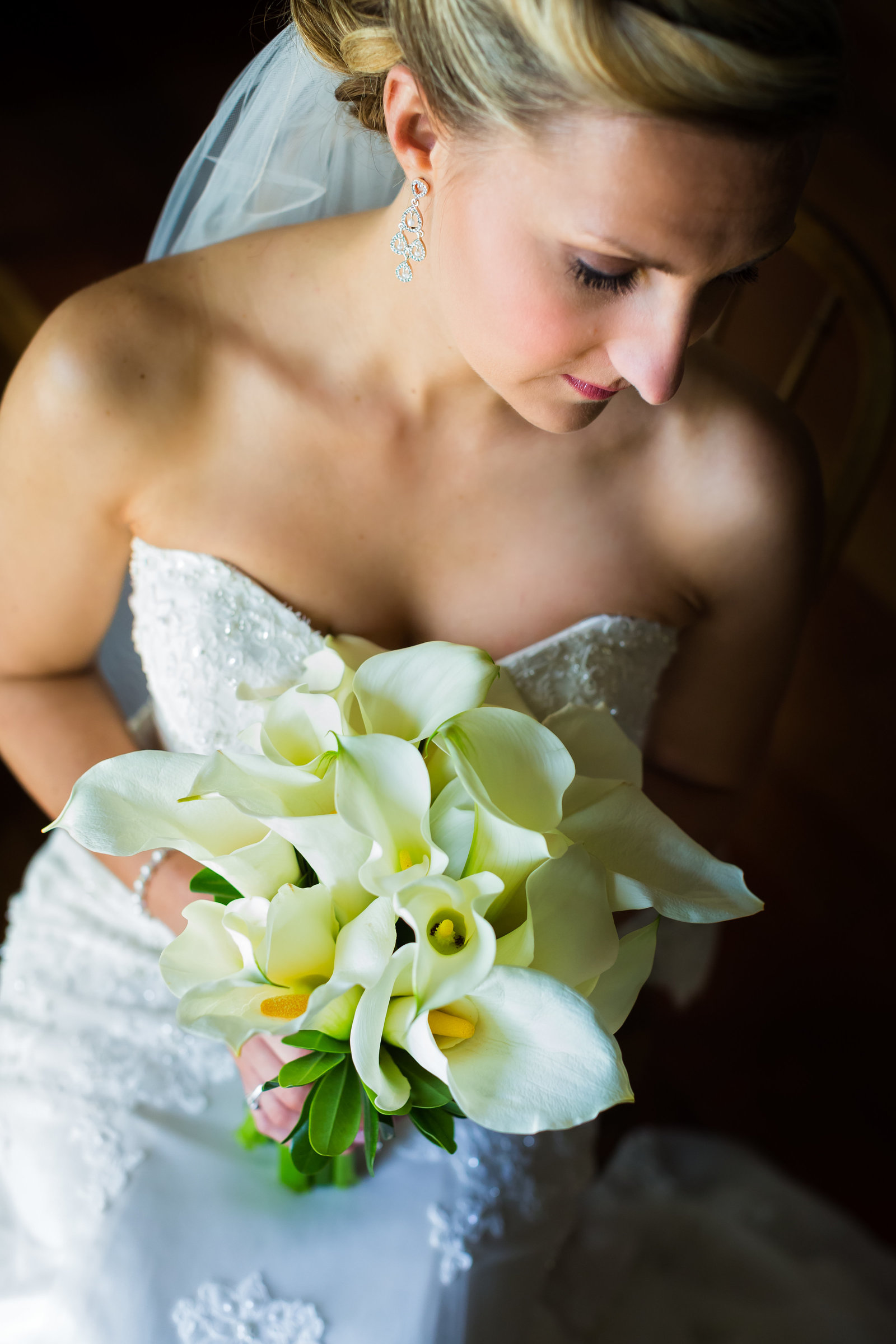 Barrington IL Wedding