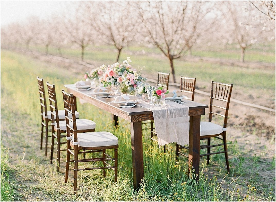 almond orchard inspiration_0008