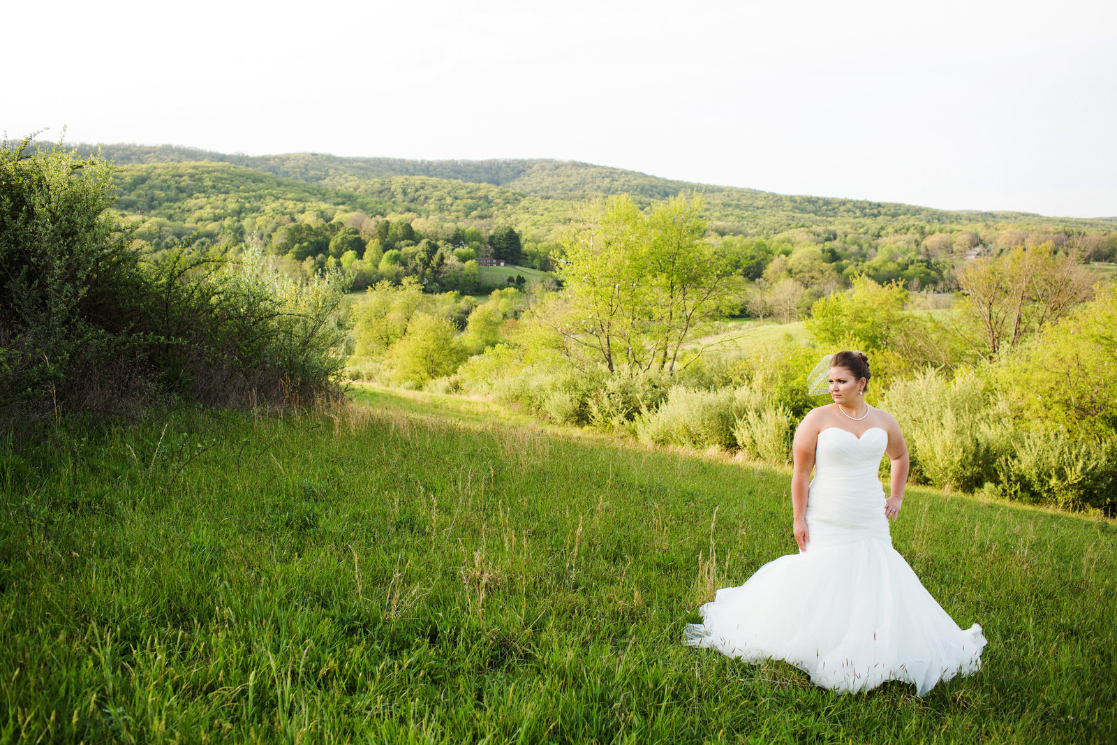 bridal portrait skyryder engagement wedding photography blacksburg roanoke charlottesville lexington radford-007