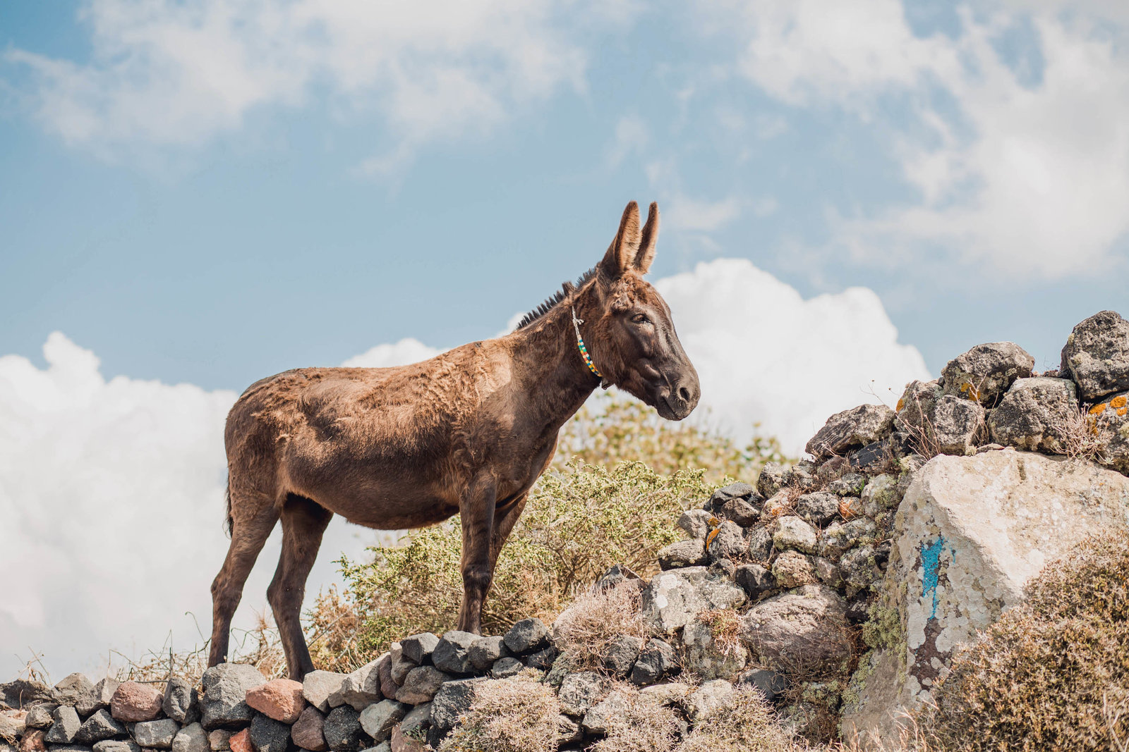 donkey-rocks-destination-travel-santorini-wedding-kate-timbers-photo-2575