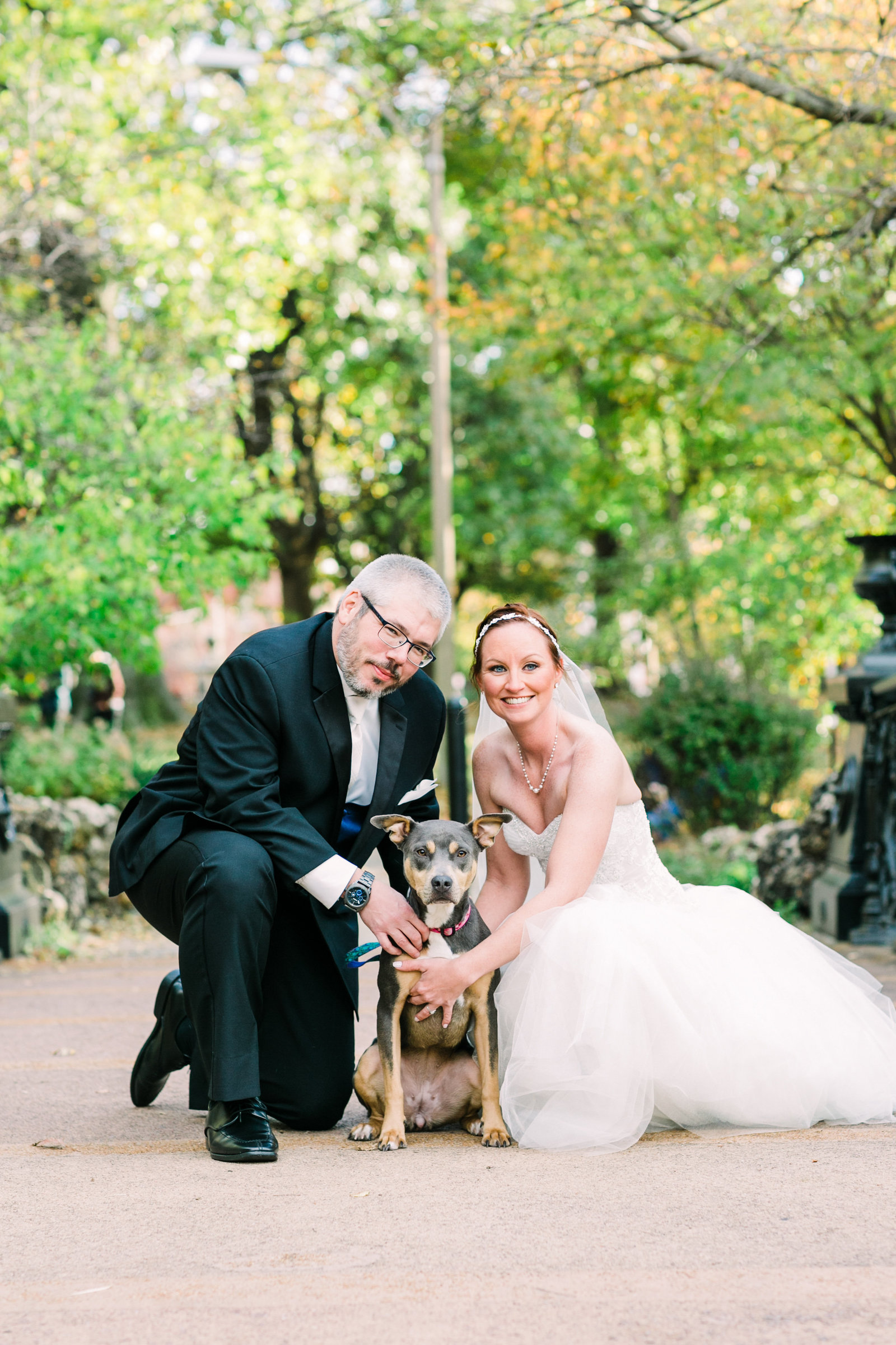 Bride and Groom, Sarah and Chris, pose with their dog, Dadney a pitbull mix, on a bride in Lafayette Park by Jackelynn Noel Photography