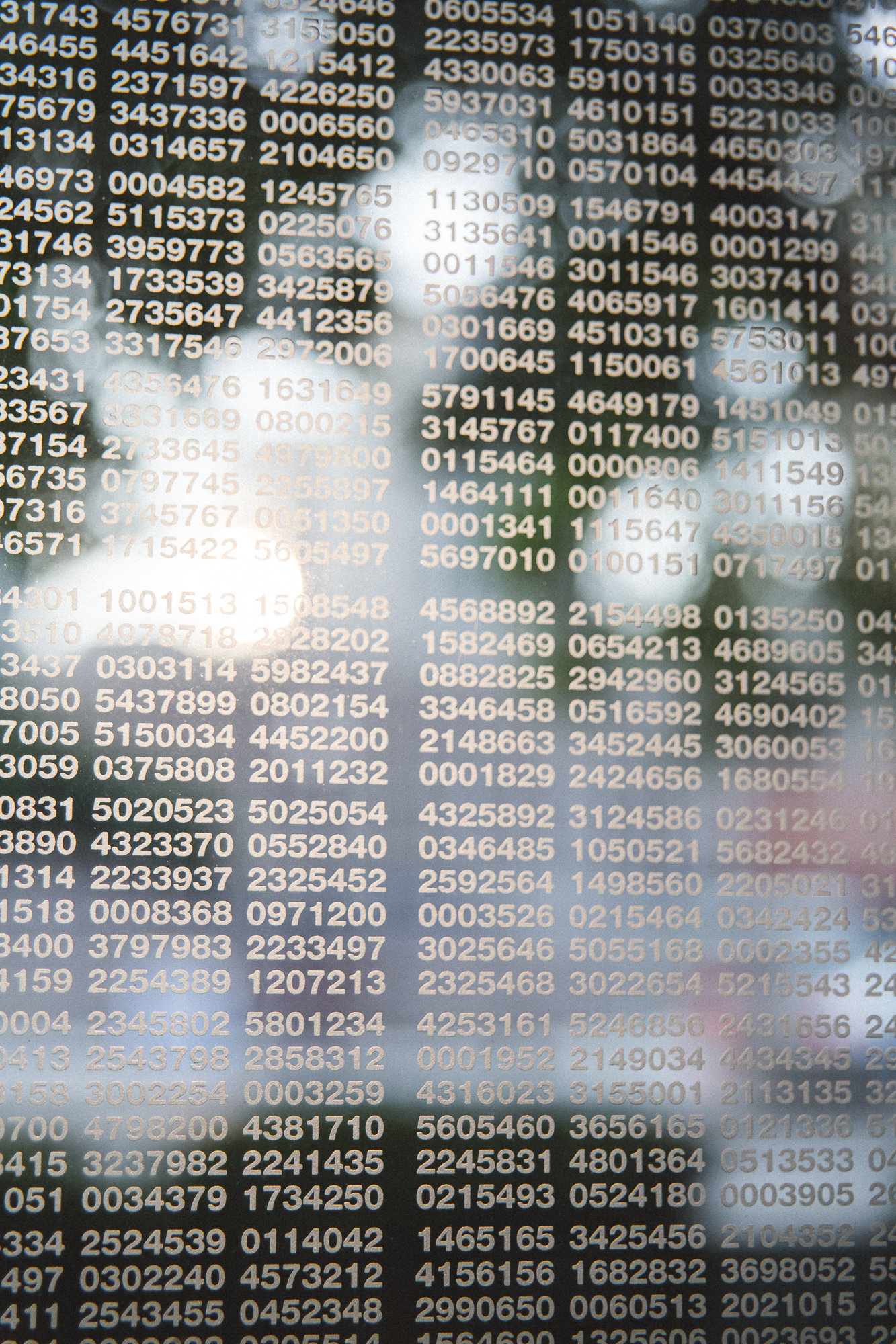 Boston MA - DiBlasio Photography-27
