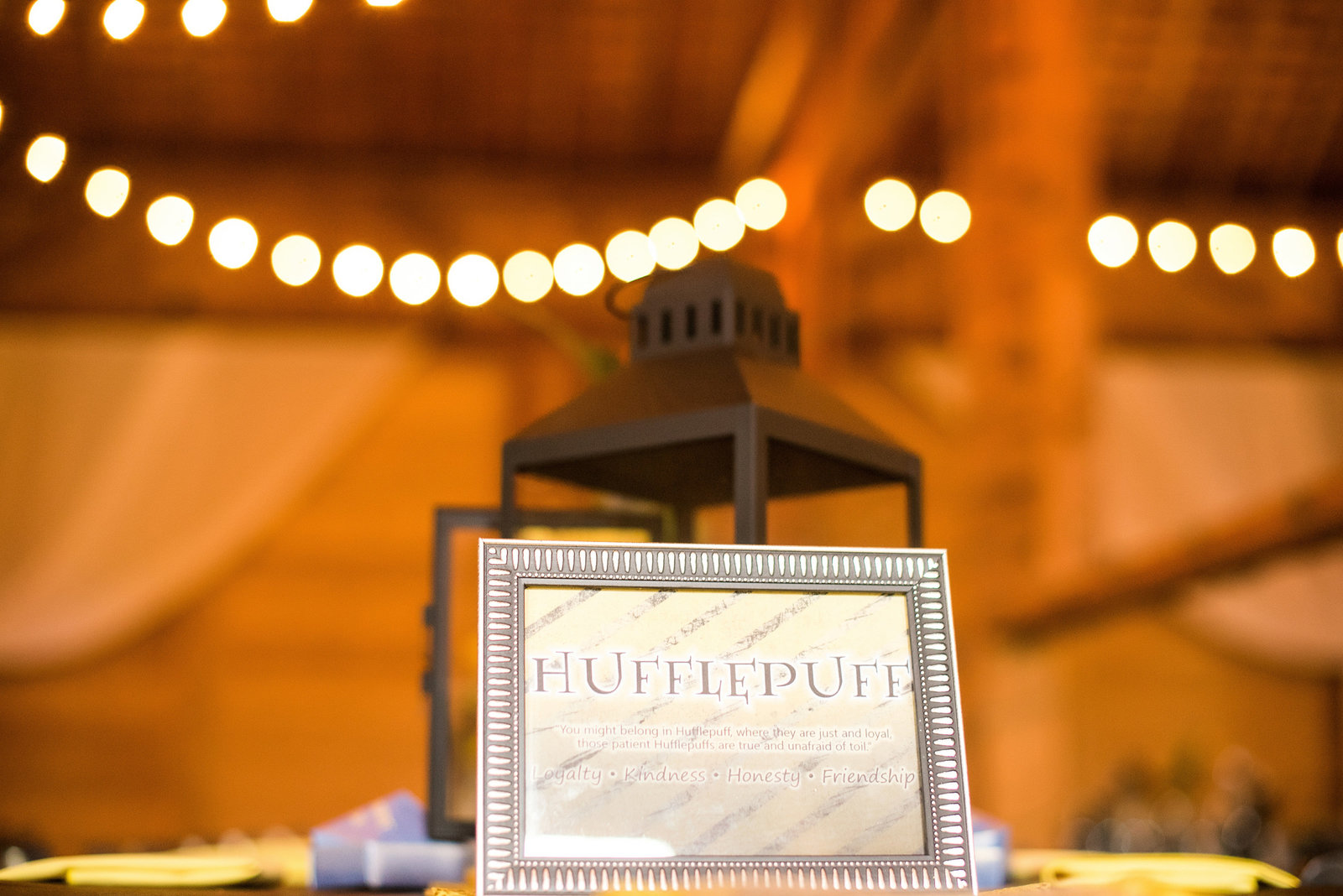 Stephanie&David_Harry_Potter_Wedding-1
