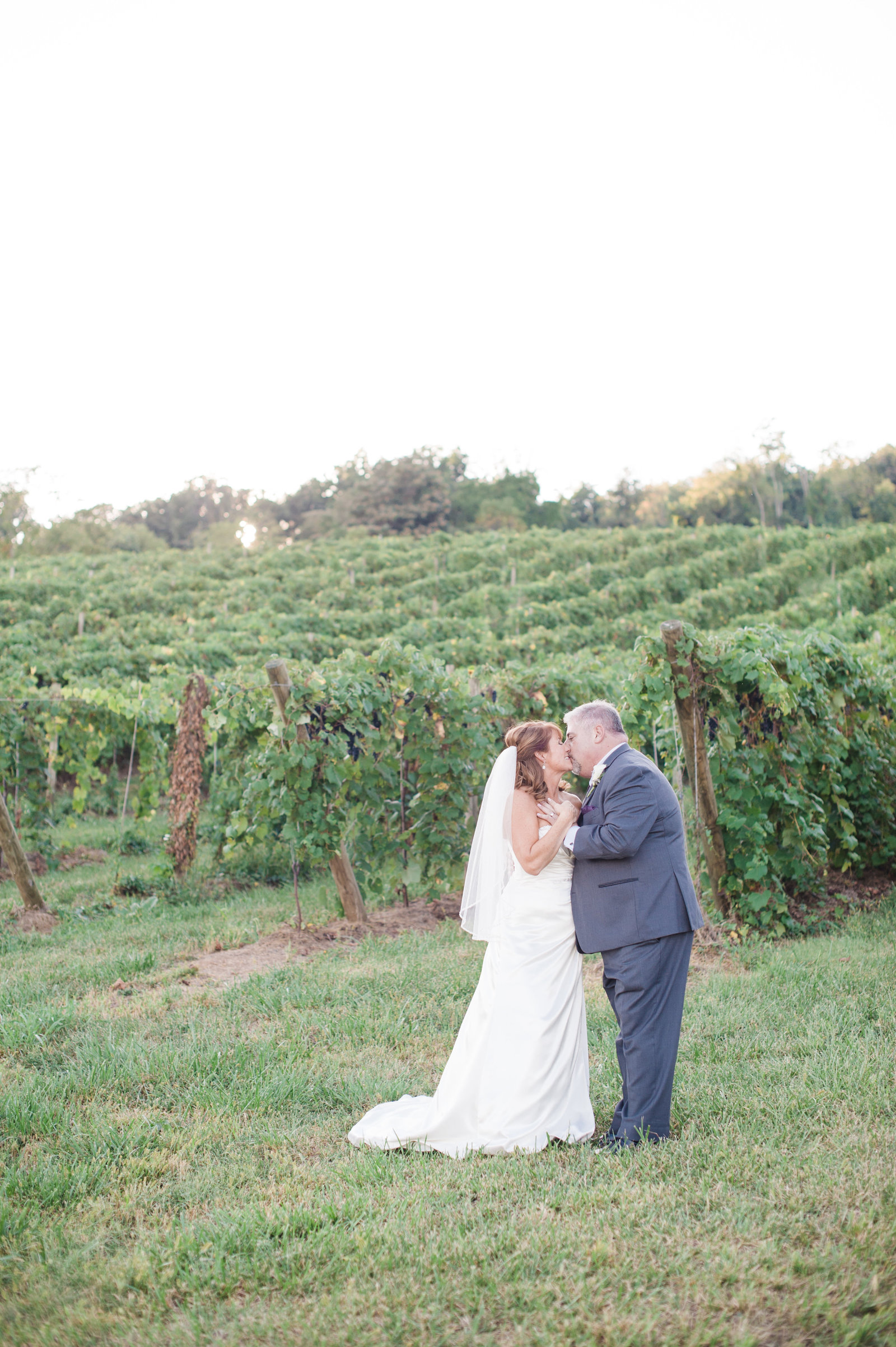 Bluemont Vineyards Wedding - Virginia Wedding by the Hill Studios - Kim and Alan Married-57