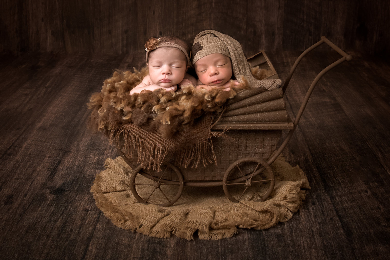Twin babies in carriage