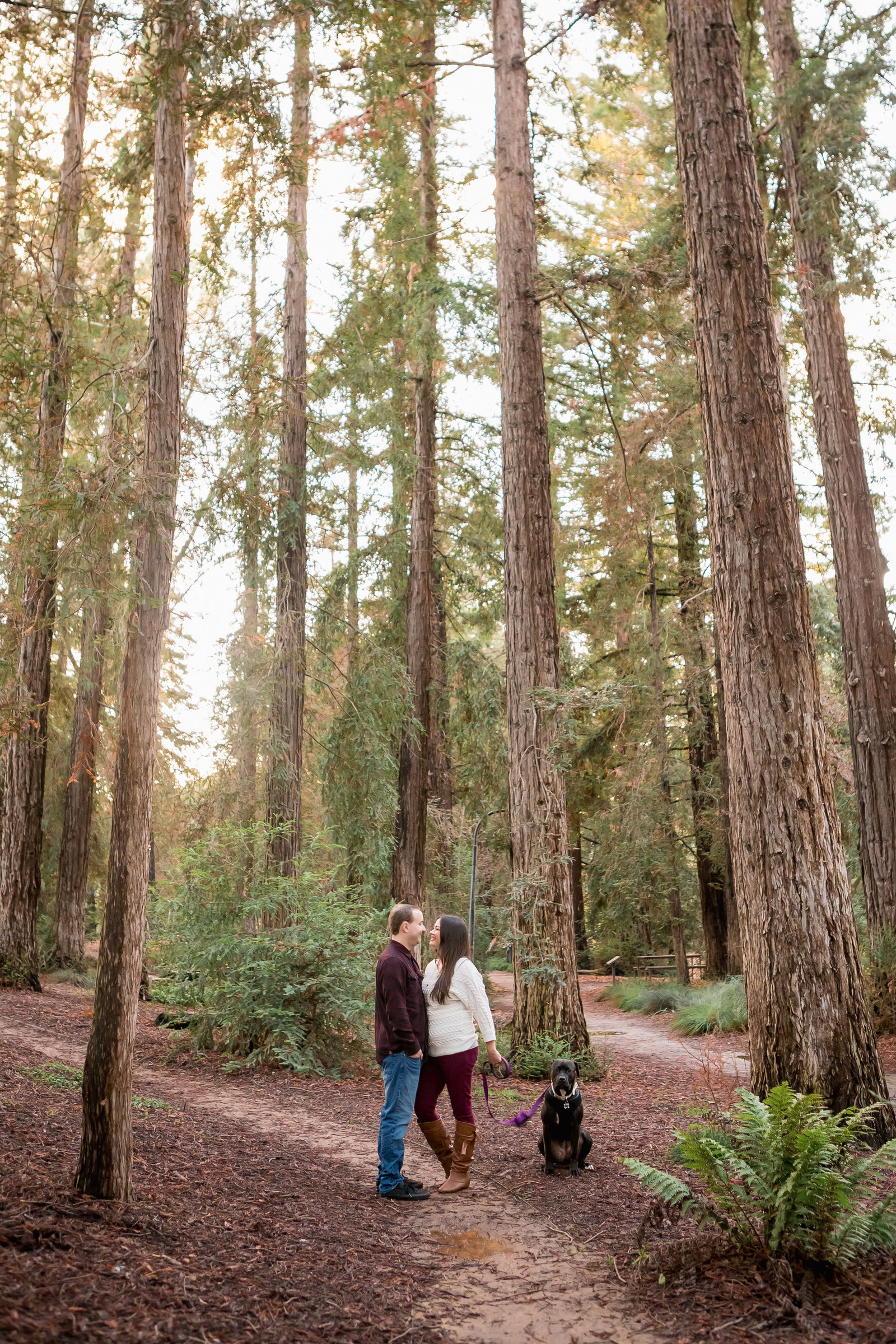 UC Davis Arboretum engaged couple with dog kissing under trees