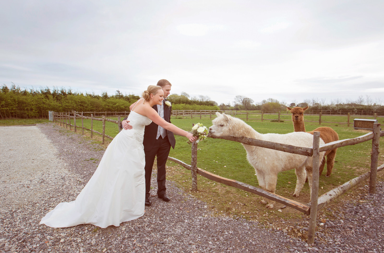 adorlee-0088-southend-barns-wedding-photographer-chichester-west-sussex