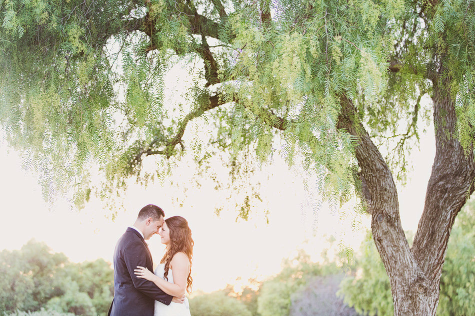 Creative portrait of bride and groom under a tree in Orange County