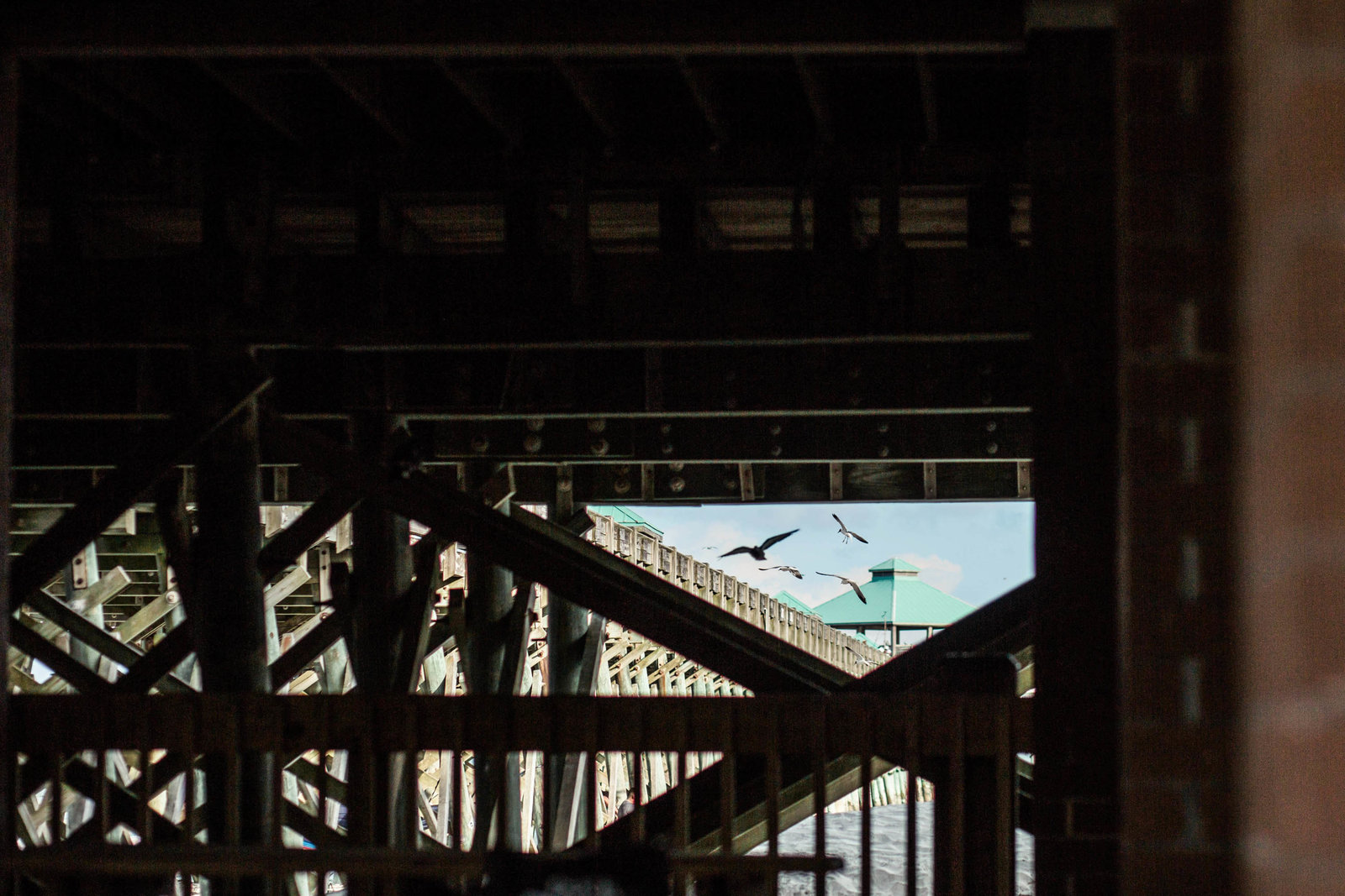under-pier-folly-beach-charleston-sc-kate-timbers-photography-1237