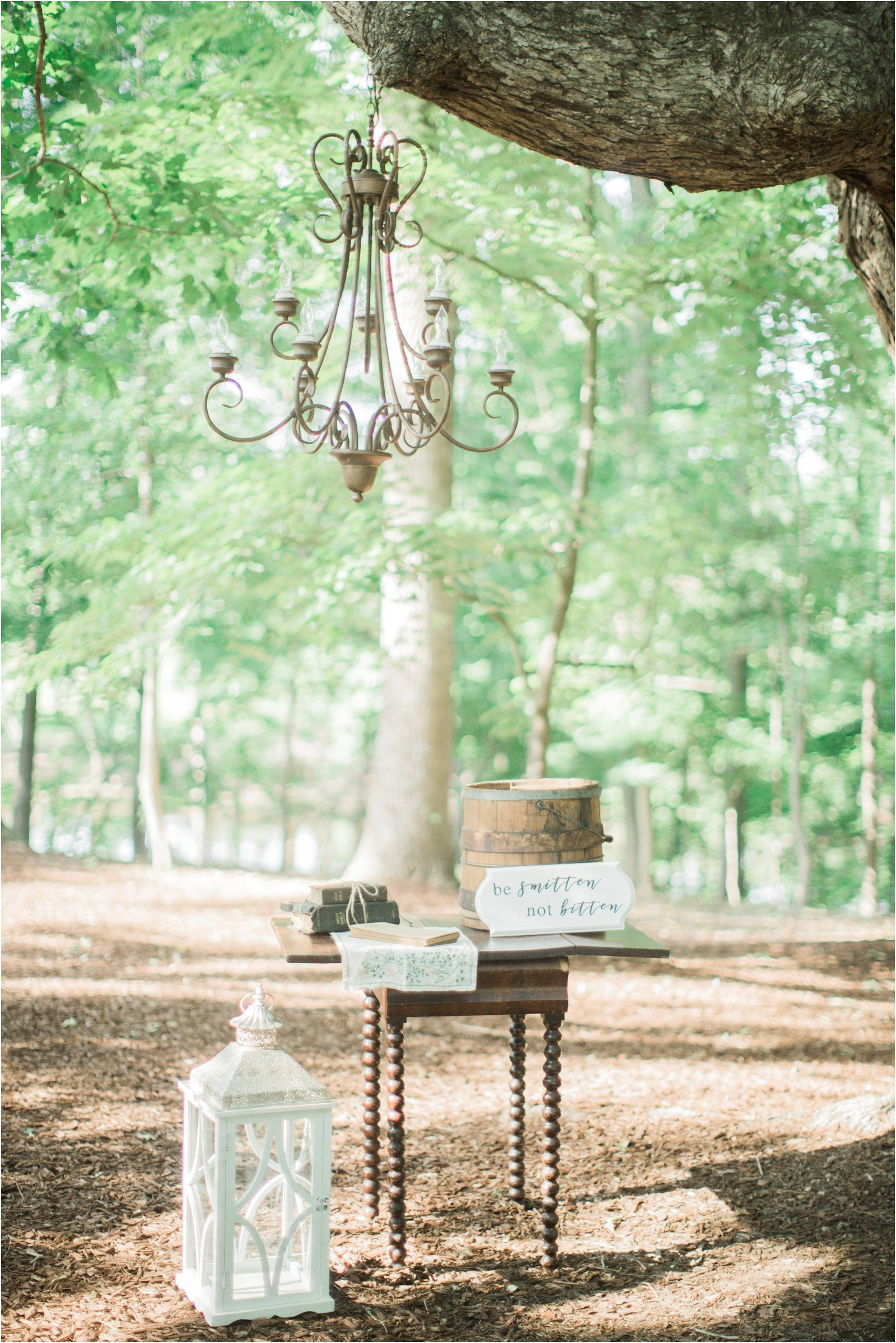 Chapel in the Woods Rustic Country Vintage Wedding Raleigh NC Plume Events Andrew & Tianna Photography-17