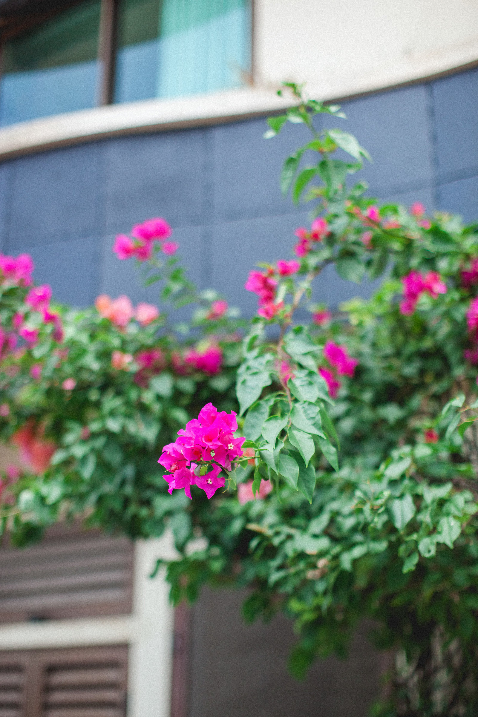 DiBlasio Photo-Mexico-9935