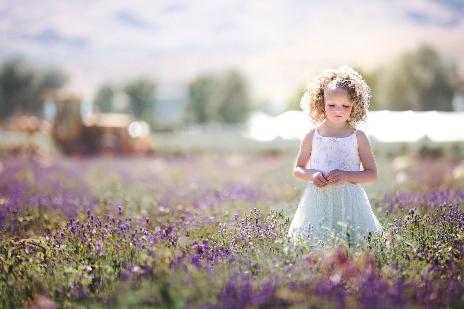 Utah Child Photographer Wish Photography_0224