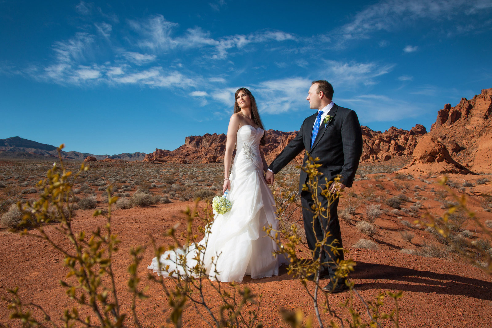 Destination Desert Elopement_0006